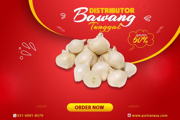 distributor bawang tunggal surabaya